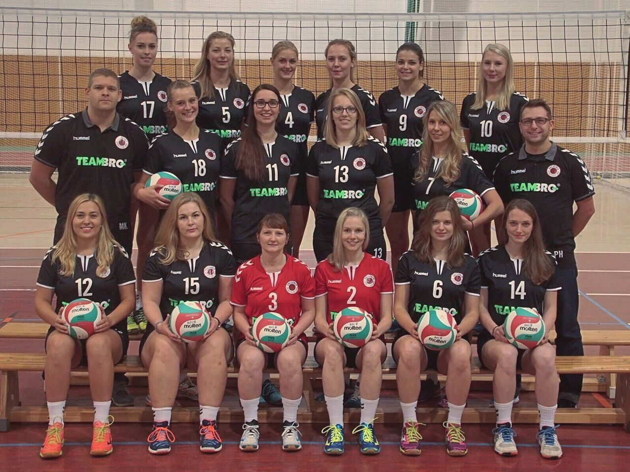 volleyball damen dresden